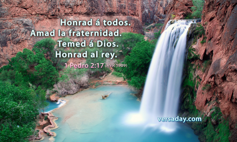 1 Pedro 2:17 - Versiculo para Febrero 17